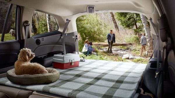 Family camping with dog in back of Honda