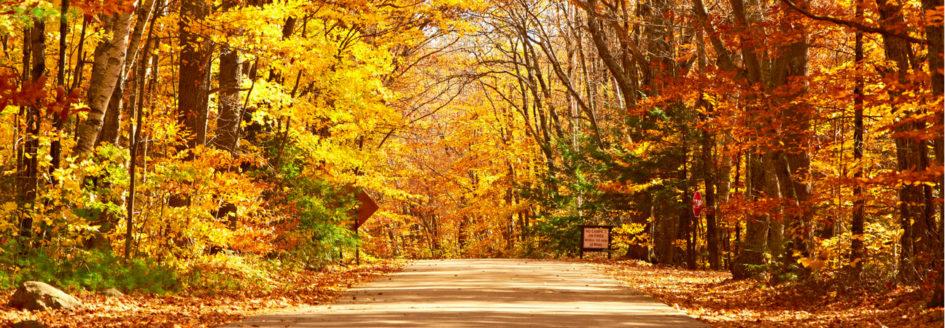 Fall Activities Greensboro NC